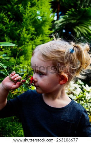 Little blond girl smells flower. Childhood, gesture and people.