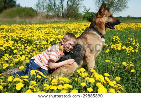 Little blonde boy playing with his large Alsatian dog on the wild meadow all in yellow dandelions during sunny day.