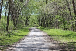 Little Blue Trace Trail (for Hiking, Biking and other Recreation) Passing through Woodland in Jackson County, MO on Beautiful Spring Day