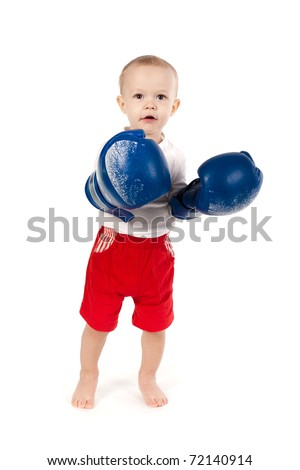 little boxer isolated on white background