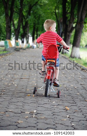 Little boy aged four riding a bike in park. Rear view.