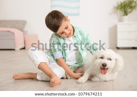 Little boy and bichon frise dog at home #1079674211