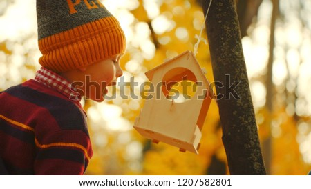 Little boy and the birdhouse in the park