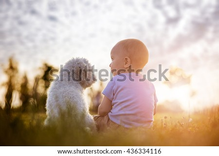 Little boy and white puppy outdoors in summer