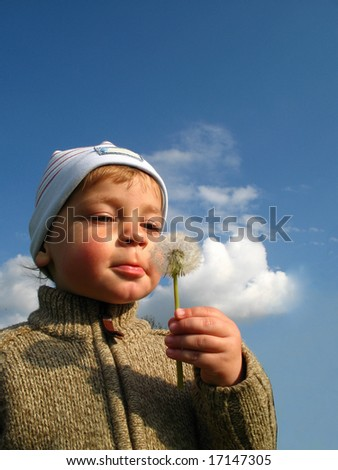 Little boy blow blowball - stock photo