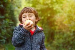 Little boy child kid eating apple fruit autumn fall copyspace garden nature outdoors
