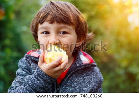 Little boy child kid eating apple fruit outdoor autumn fall nature healthy outdoors