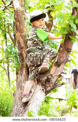 little boy climbed a tree