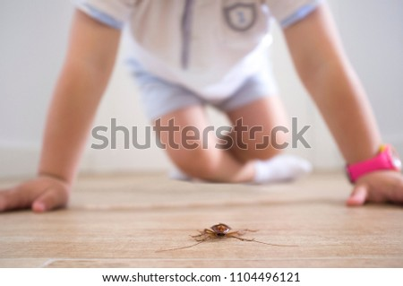 Little boy close to cockroach on the house floor. Pest at home with children concept