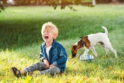 Little boy crying and sitting on the ground. Kids tantrums during walk. Upset child boy at the summer park. Childhood. Sad kid walking with dog.