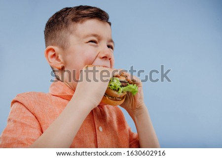 little boy eats a burger. fast food and junk food. look with taste. kid love hamburger. isolated on blue background. studio. look at the camera. close up Imagine de stoc ©