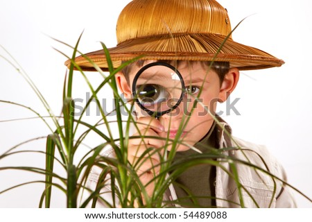 little boy explorer examining small palm tree with magnifying glass