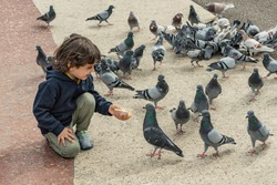 Little boy feeding a group of pigeons. Friendly boy shares his bread to hungry birds