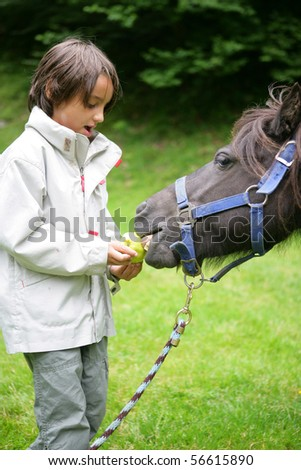 Little boy giving an apple to a pony