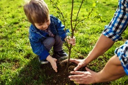little boy helping his father to plant the tree while working together in the garden. sunday. smiling face. spring time. Love and protect nature concept