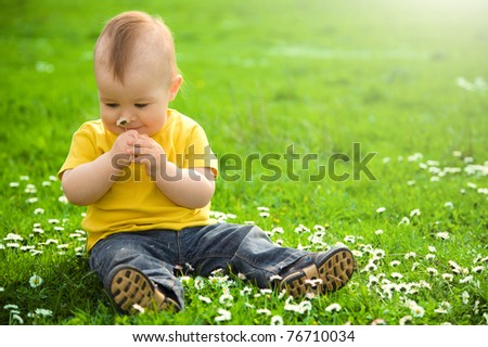Little boy is sitting on green meadow and smell daisy