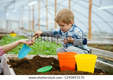 little boy. little boy work in greenhouse. little boy gardener play with soil. little boy needs help of mother. flowers need good care