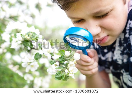 Little boy looking at flower through magnifier. Charming schoolboy exploring nature. Kid discovering spring cherry blossoms with magnifying glass. Young biologist, curious child outdoor activity #1398681872