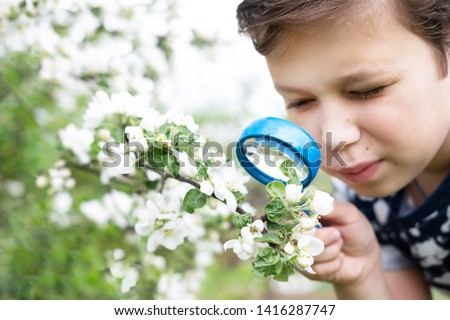 Little boy looking at flower through magnifier. Charming schoolboy exploring nature. Kid discovering spring cherry blossoms with magnifying glass. Young biologist, curious child outdoor activity #1416287747