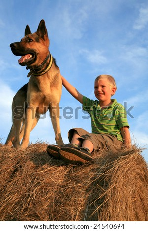 Little boy playing with the dog (Alsatian) on the meadow - summer in the country. Happiness, emotion