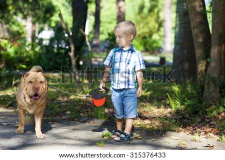 Little boy walks the dog