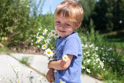 Little boy with chamomile stands in nature. The kid smiles and holds flowers. Beautiful moments of summer. A child in a striped T-shirt walks in the summer. A gentle baby with a smile.