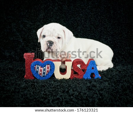 Little Bulldog puppy laying with his paw on an I Love U.S.A. sign on a black background.