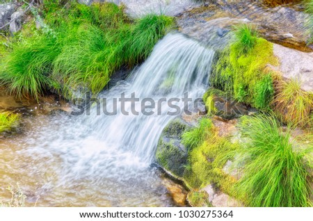 Little cascade through granite rocks. Stream of the Aguilon. Purgatory cascades area, in Rascafría (Madrid - Spain). Guadarrama mountain range. Beautiful scenery with plants of intense green color. #1030275364
