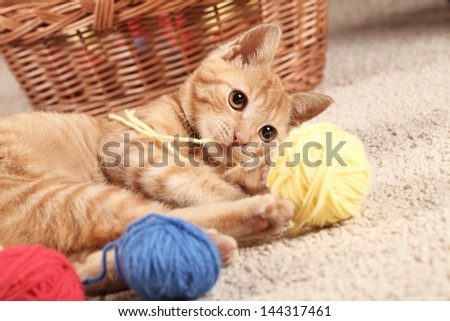 Little cat playing with wool on the carpet
