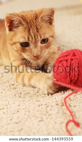 Little cat playing with wool on the carpet.