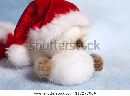 Little cat wearing Santa's hat sleeping on pompom