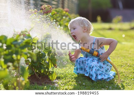 Little child, adorable blonde toddler girl, watering the plants, beautiful hortensia flowers, from hose spray in the garden at the backyard of the house on a sunny summer evening