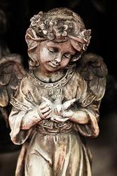 Little child angel