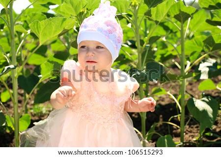 Little child girl walking in green sunflower field