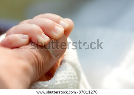 Little child holding father's hand. Close-up view