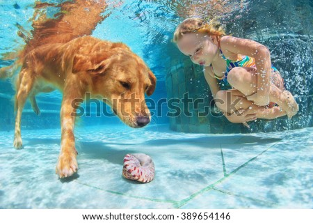 Little child play with fun and train golden labrador retriever puppy in swimming pool - jump and dive underwater to retrieve shell. Active games with family pets and popular dog breeds like companion.