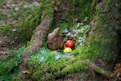 Little chocolate bunny in the woods