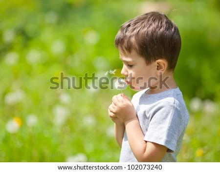 Little cute boy blowing dandelion on blurred dandelion field
