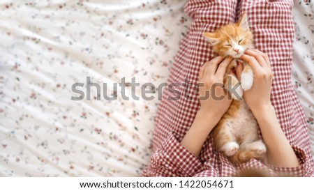 Little cute ginger kitty enjoys stroking. Caucasian girl's hand stroked the little red and white fluffy kitten. Selective focus and copy space. Cat tired after an active game. Domestic animals concept