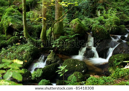 little flowing river in beautiful green nature