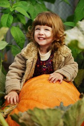 little funny girl with pumpkins in the garden