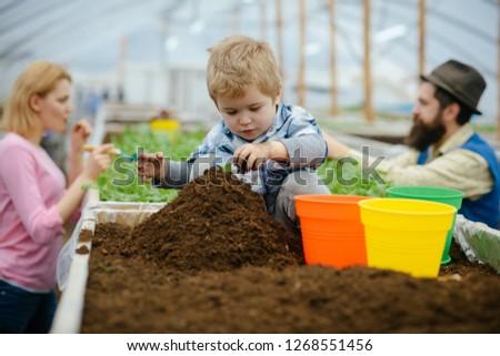 little gardener. little gardener work with soil. little gardener in greenhouse. little gardener child planting flowers