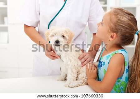 Little girl and her fluffy dog at the veterinary doctor office