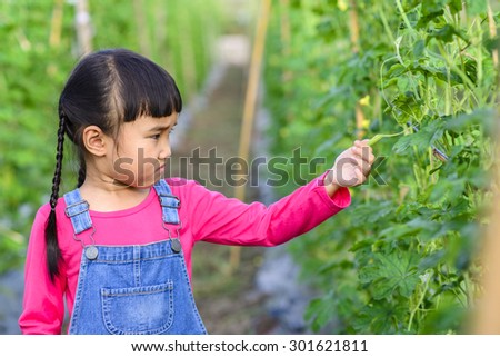 Little girl check product in the green garden after plantation
