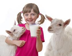 little girl drinking healthy goat milk