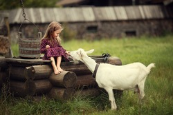 Little girl feeding a goat sitting on a wooden well in the country in Russia. Image with selective focus and toning