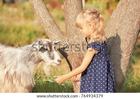 Little girl feeding goat at farm Images and Stock Photos - Page: 2