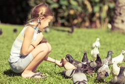 little girl feeding pigeons in the park at the day time