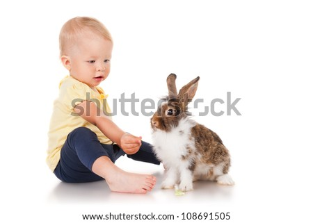 Little girl feeding rabbits cabbage