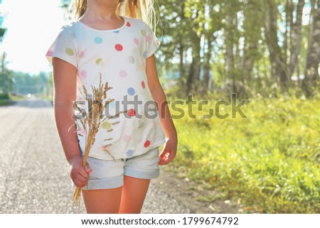 little girl holding a bunch of dry grass. yellow dry grass in girl's hand. unrecognizable girl outdoors in autumn scenery. autumn seasonal card. pre-schooler wearing t-shirt and shorts. Stock photo ©